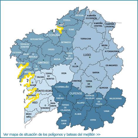 Mejilln de Galicia